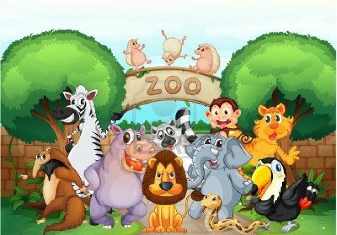 zoo-05