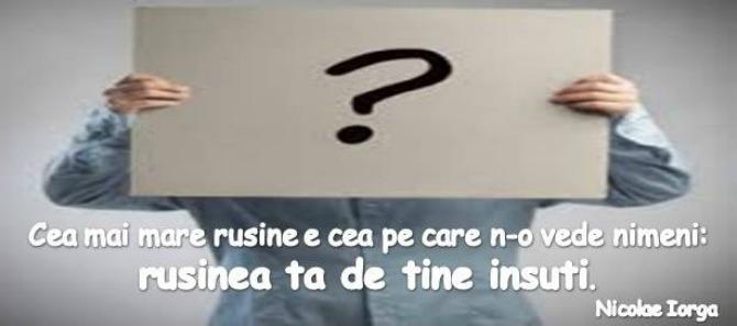 despre-rusine1