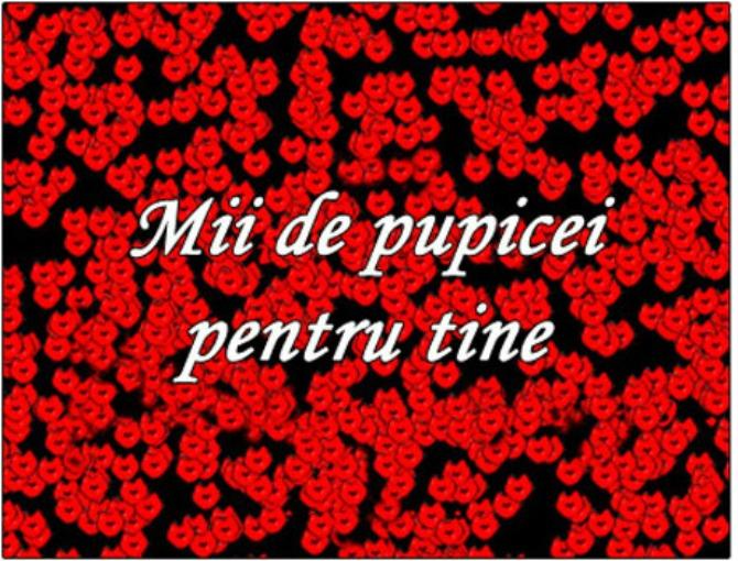 mii-de-pupicei-dc0c7c76d3c0