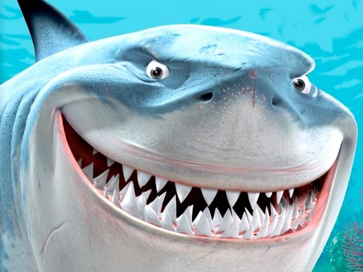 rechin-1333637319